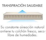 transpiracion-saludable