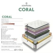 coral tcn